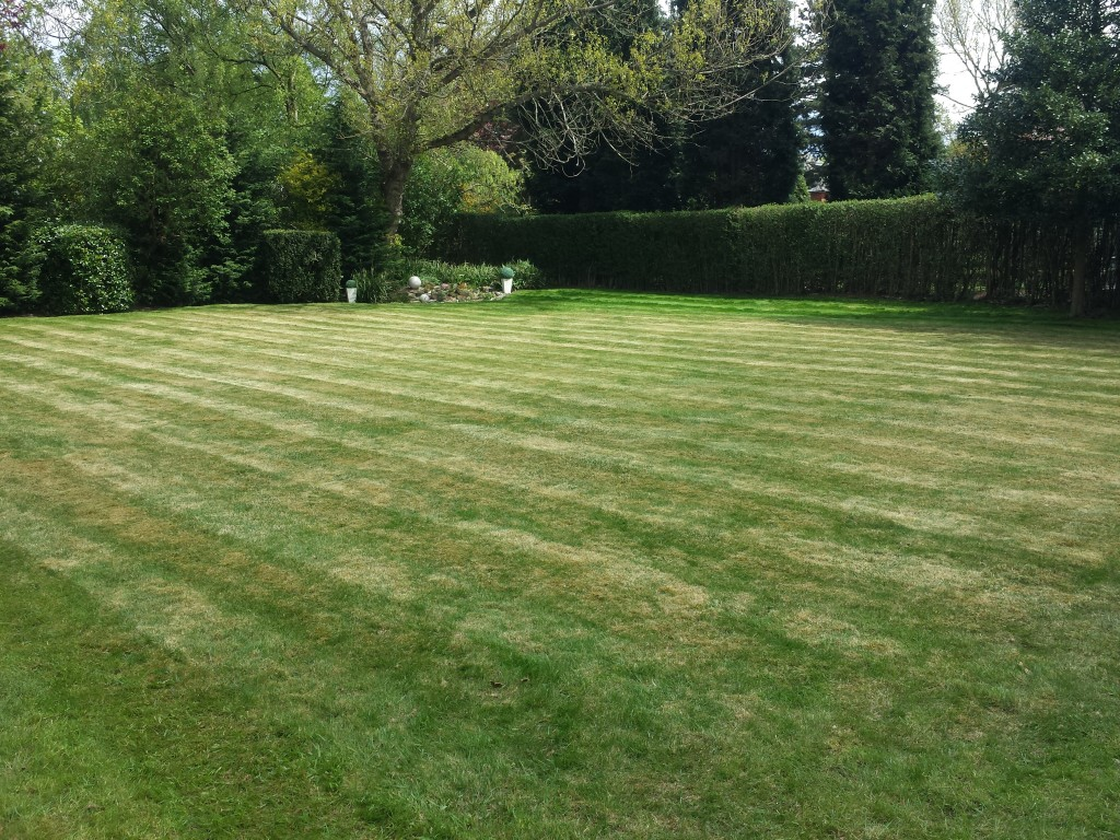 Garden Maintenance Leeds