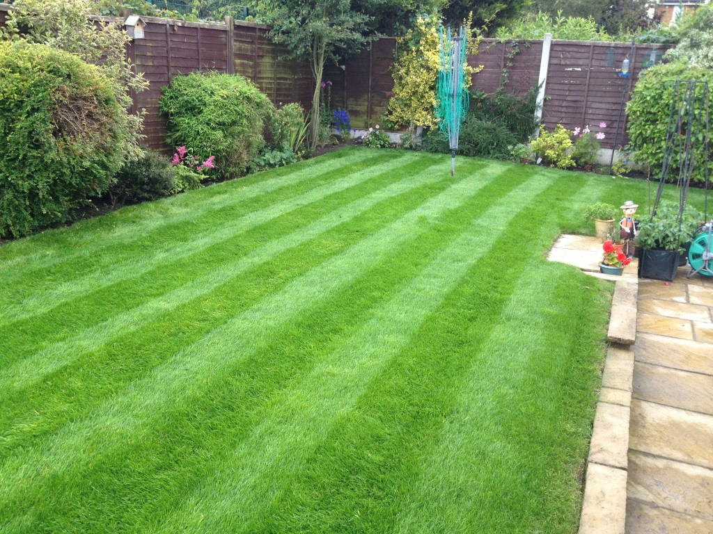 Smart gardens garden maintenance leeds gardening for Gardening jobs manchester